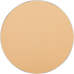 Freedom System Mattifying System 3S Pressed Powder Round 302 icon