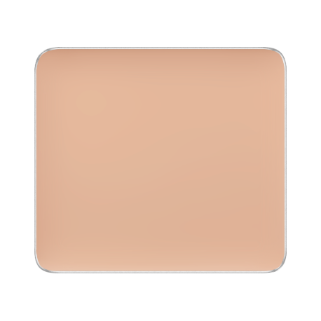 Freedom System Camouflage Concealer 107