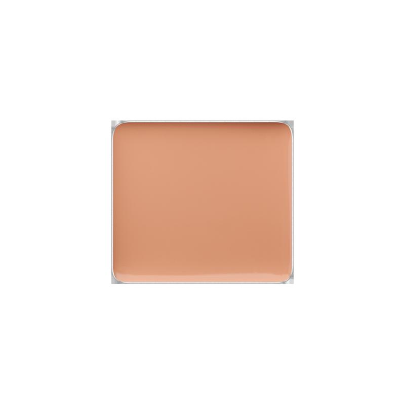 Freedom System Cream Concealer LC100