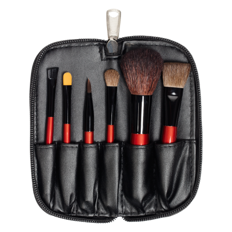 Travel Brush Set (6 PCS)