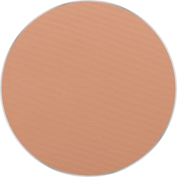 Freedom System Pressed Powder 11