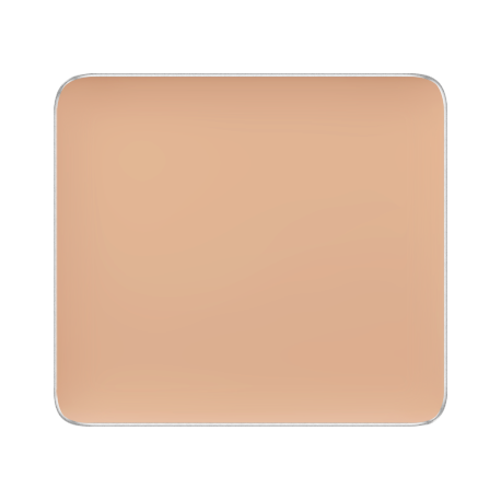 Freedom System Camouflage Concealer 108