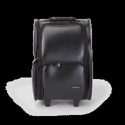 Makeup Case With Wheels (KC-P42L)