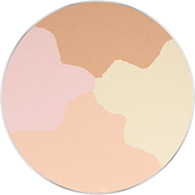 Freedom System Pressed Powder Round 24