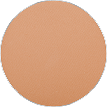 Freedom System Mattifying System 3S Pressed Powder Round NF 306